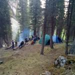 Лесной лагерь